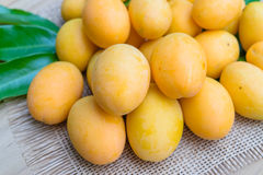 Mangue de prune, ou fruit marial de prune Photos stock