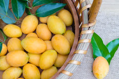 Mangue de prune, ou fruit marial de prune Photographie stock