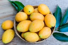 Mangue de prune, ou fruit marial de prune Photo libre de droits