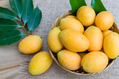 Mangue de prune, ou fruit marial de prune Images libres de droits