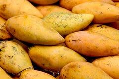Mangue jaune Photos stock