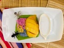 Mangue mûre et riz collant en lait de noix de coco Image libre de droits