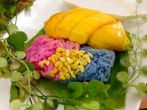 Mangue mûre et riz collant en lait de noix de coco Photographie stock