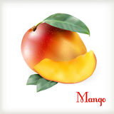 Mangue mûre sur le blanc Photos stock