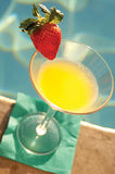 Mangue martini photographie stock libre de droits