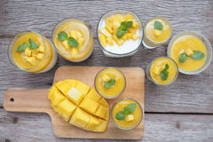 Mangue Panna Cotta Photo stock