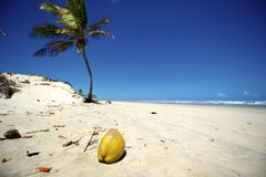 Mangue Seco, Bahia, Brazil. Mangue Seco is  located in the northern coast of the state of Bahia, very close to the border with the state of Sergipe. Actually Stock Images