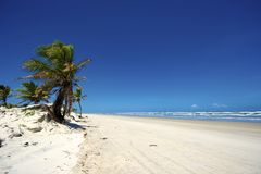 Mangue Seco, Bahia, Brazil. Mangue Seco is  located in the northern coast of the state of Bahia, very close to the border with the state of Sergipe. Actually Royalty Free Stock Photo