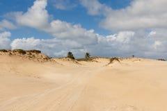 Mangue Seco, Jandaíra, Bahia, Brazil. Sand dunes and palm trees of Mangue Seco, Jandaíra, Bahia, Brazil Royalty Free Stock Photos