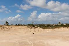 Mangue Seco, Jandaíra, Bahia, Brazil. Sand dunes and palm trees of Mangue Seco, Jandaíra, Bahia, Brazil Stock Images