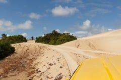 Mangue Seco, Jandaíra, Bahia, Brazil. Sand dunes and palm trees on buggy trip of Mangue Seco, Jandaíra, Bahia, Brazil Royalty Free Stock Images