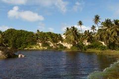 Free Mangue Seco, Jandaíra, Bahia, Brazil Stock Images - 89378114