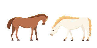 Mangueiras isoladas exploração agrícola do vetor dos desenhos animados Coleção da posição animal do cavalo Silhueta diferente Foto de Stock Royalty Free