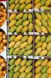 Mangues Photo stock