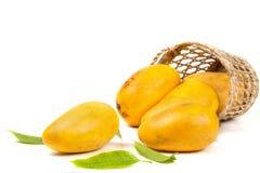 Mangues dans le panier avec des feuilles Image stock