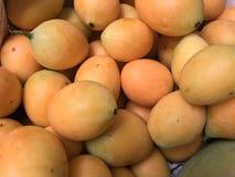 Mangues de prune Photo stock