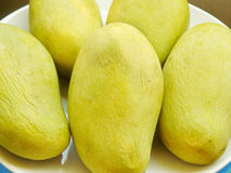 Mangues jaunes Photo stock