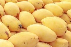 Mangues thaïlandaises, fruit Thaïlande Images libres de droits