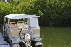 Manguezais da água do barco da excursão Imagens de Stock