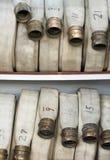 Manguitos de fuego Imagenes de archivo