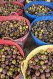 Mangustão Imagens de Stock