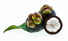 Mangustão no fundo branco, o fruto roxo tropical em Tha Fotografia de Stock Royalty Free