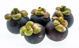 Mangustão no fundo branco, o fruto roxo tropical em Tha Fotos de Stock