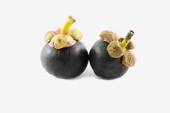 Mangustão no fundo branco, rainha dos frutos Imagens de Stock Royalty Free