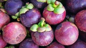 Mangustão a rainha dos frutos Foto de Stock Royalty Free