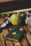 Manhã acolhedor do outono na casa de campo, no copo do chá e na cobertura morna na tabela de madeira Foto de Stock Royalty Free