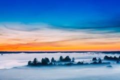 Manhã bonita Céu do nascer do sol e silhuetas das árvores no prado Fotografia de Stock Royalty Free