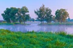 Manhã bonita com as árvores no riverbank. imagens de stock royalty free