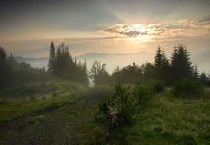Manhã bonita em Carpathians, Ucrânia. foto de stock royalty free