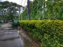 Manhã chuvosa em público Fotos de Stock Royalty Free