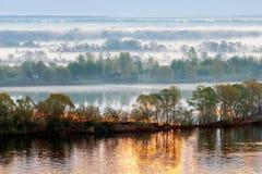A manhã coberta com a névoa Fotografia de Stock Royalty Free