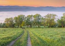 Manhã colorida da mola em montanhas nevoentas imagem de stock royalty free