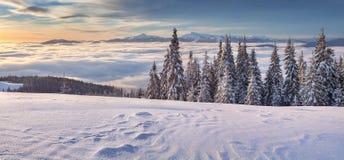 Manhã colorida do inverno nas montanhas Fotografia de Stock