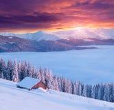 Manhã colorida do inverno nas montanhas Imagens de Stock