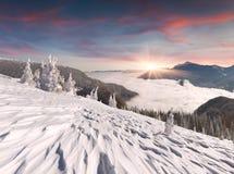 Manhã colorida do inverno nas montanhas Carpathian. Fotografia de Stock