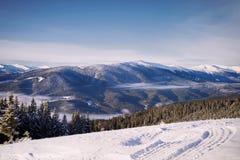 Manhã colorida do inverno nas montanhas Carpathian Carpathian, Ucrânia Imagens de Stock