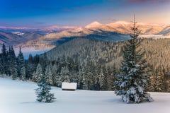 Manhã colorida do inverno nas montanhas na luz do sol Imagens de Stock