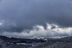 Manhã colorida do inverno nas montanhas nevoentas Fotografia de Stock