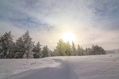 Manhã colorida do inverno nas montanhas no nascer do sol Foto de Stock Royalty Free
