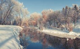 Manhã colorida do inverno no parque da cidade Imagem de Stock Royalty Free