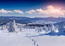 Manhã colorida do inverno nos mountais Imagem de Stock Royalty Free