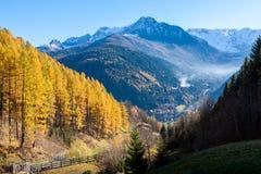 Manhã colorida do outono na montanha dos cumes, Itália Foto de Stock