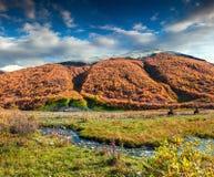Manhã colorida do outono nas montanhas de Cáucaso Foto de Stock