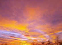 Manhã com nuvens vermelhas Foto de Stock Royalty Free