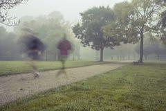 Manhã corrida no parque Imagens de Stock Royalty Free