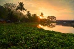 Manhã da atmosfera na borda do lago Jombor, uma vila que bonita imagens de stock royalty free
